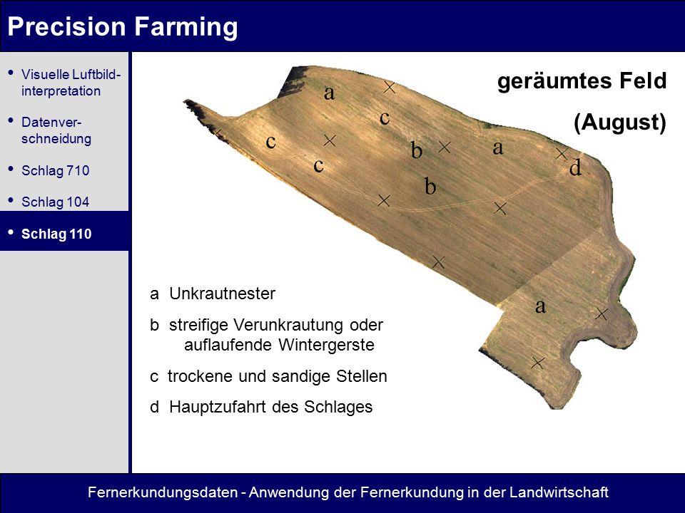 Precision Farming geräumtes Feld (August) a Unkrautnester