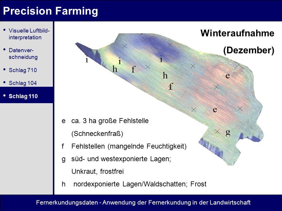 Precision Farming Winteraufnahme (Dezember)