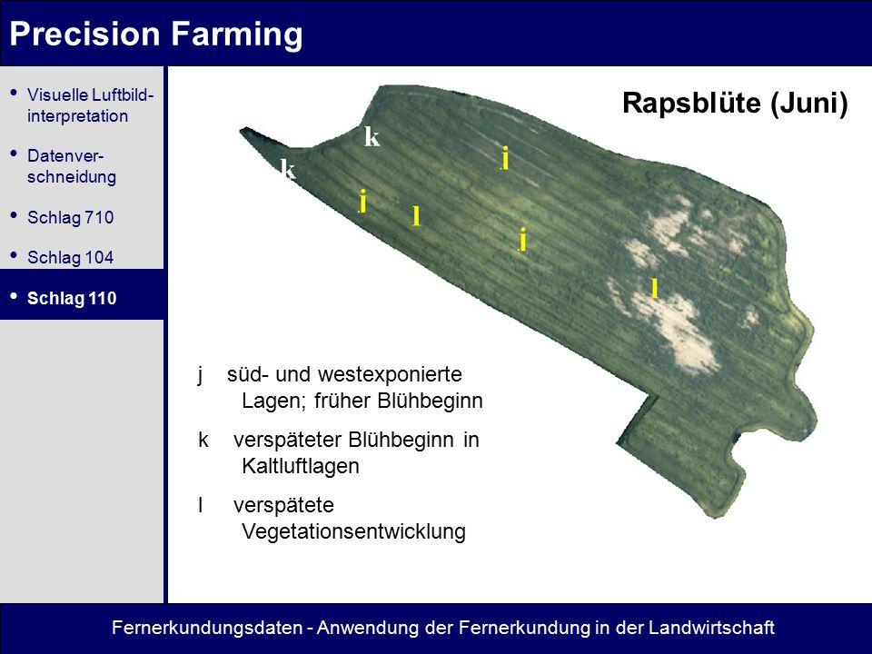 Precision Farming Rapsblüte (Juni)