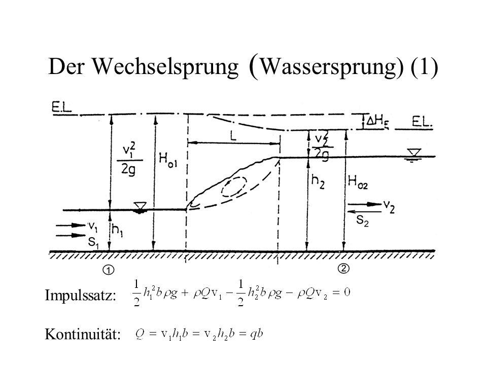 Der Wechselsprung (Wassersprung) (1)