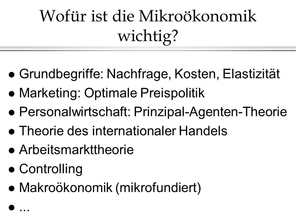 Wofür ist die Mikroökonomik wichtig