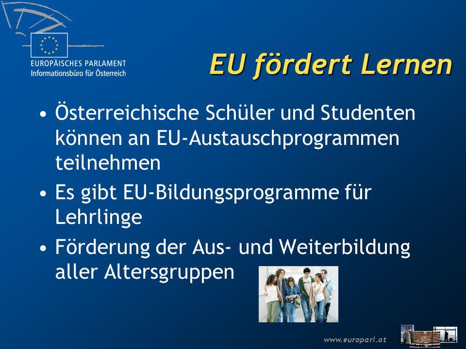 EU fördert Lernen Österreichische Schüler und Studenten können an EU-Austauschprogrammen teilnehmen.