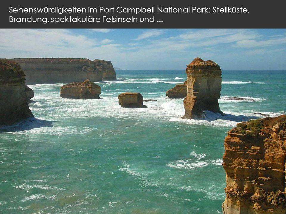 Sehenswürdigkeiten im Port Campbell National Park: Steilküste, Brandung, spektakuläre Felsinseln und ...