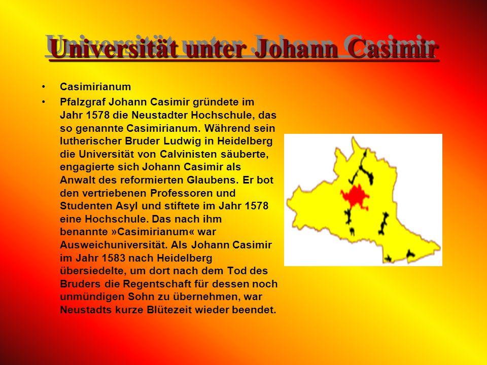 Universität unter Johann Casimir