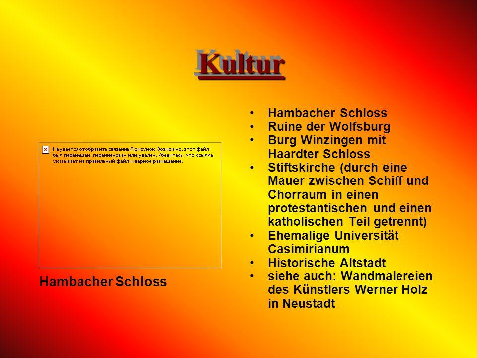 Kultur Hambacher Schloss Hambacher Schloss Ruine der Wolfsburg