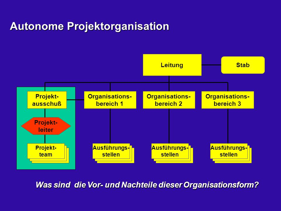 Autonome Projektorganisation