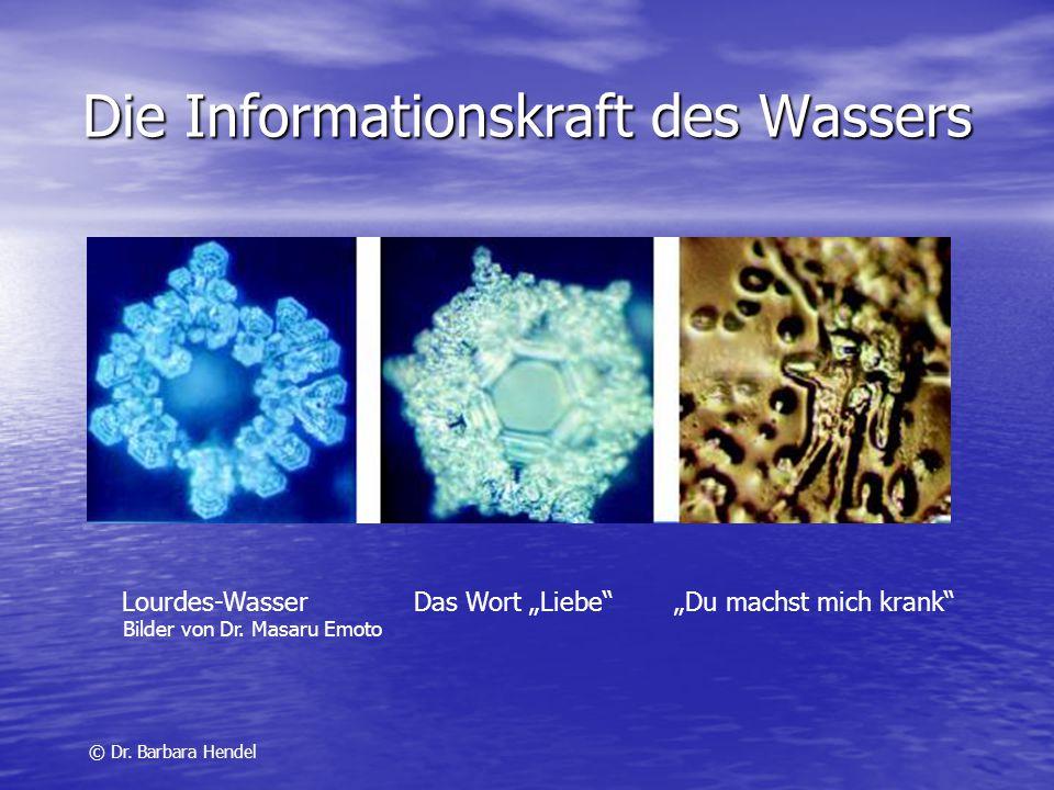 Die Informationskraft des Wassers