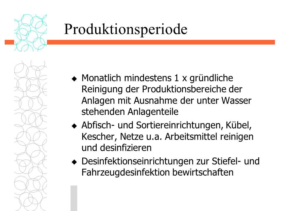 Produktionsperiode