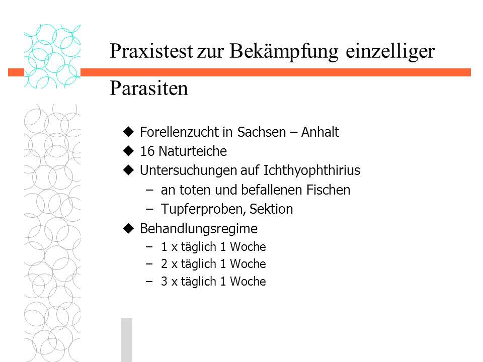 Praxistest zur Bekämpfung einzelliger Parasiten