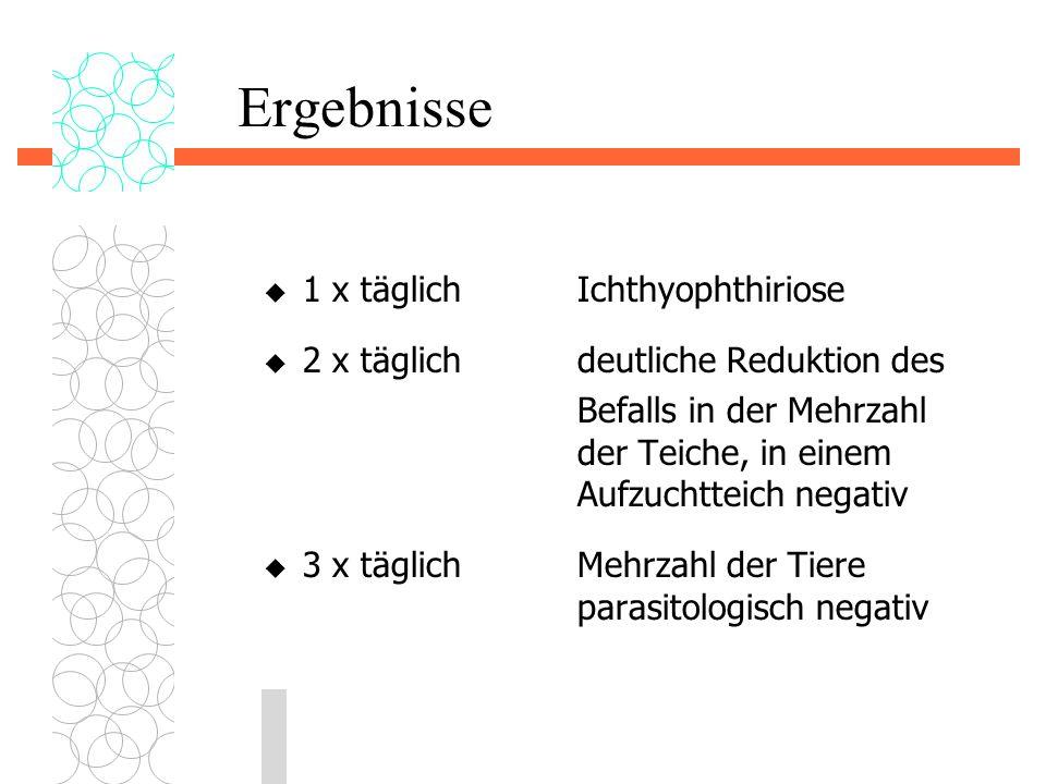 Ergebnisse 1 x täglich Ichthyophthiriose