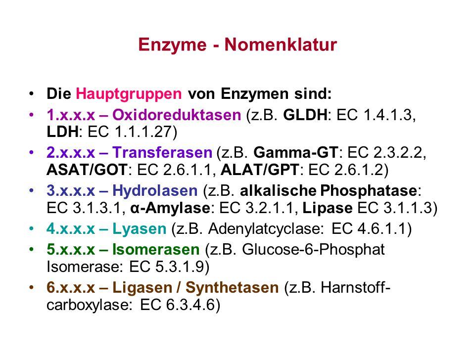Enzyme - Nomenklatur Die Hauptgruppen von Enzymen sind: