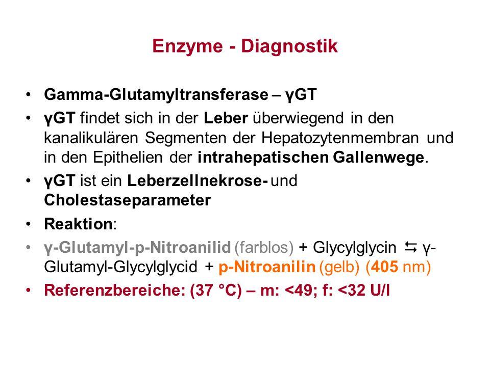 Enzyme - Diagnostik Gamma-Glutamyltransferase – γGT