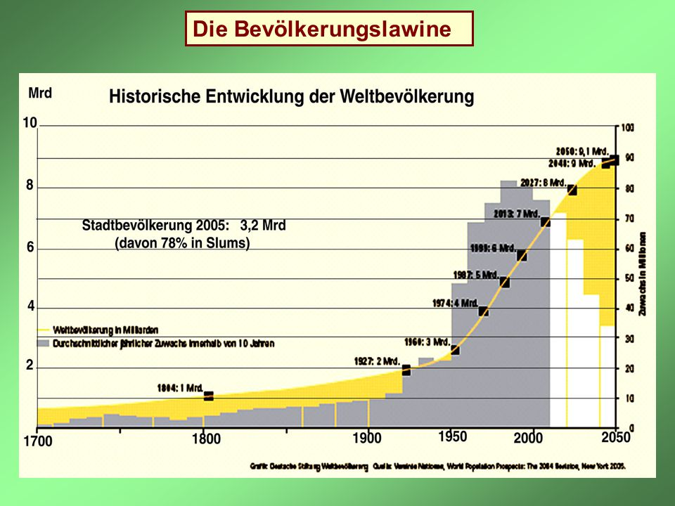 Die Bevölkerungslawine