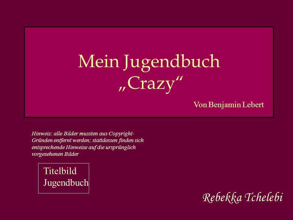 """Mein Jugendbuch """"Crazy"""