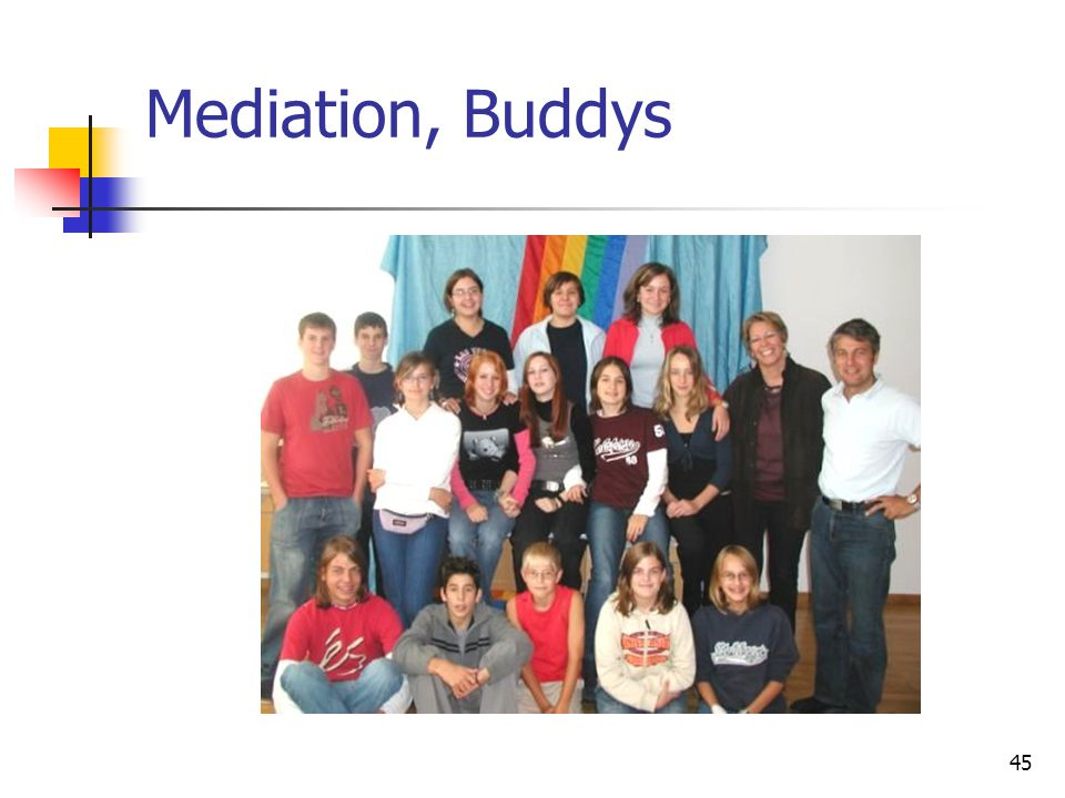 Mediation, Buddys