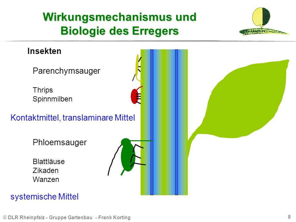 Wirkungsmechanismus und Biologie des Erregers