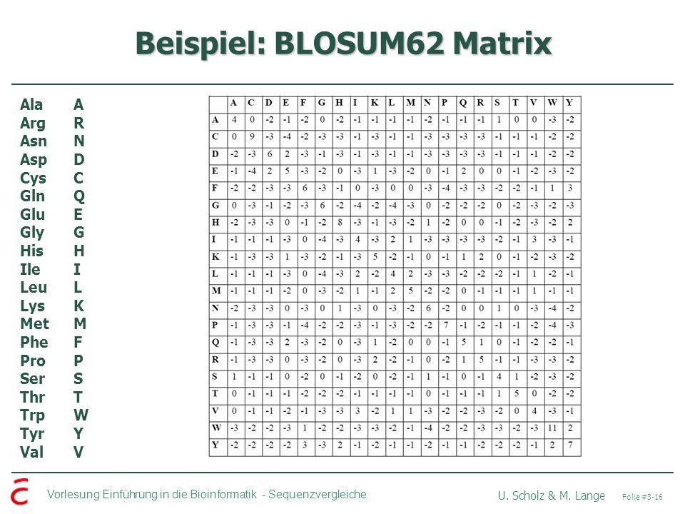 Beispiel: BLOSUM62 Matrix