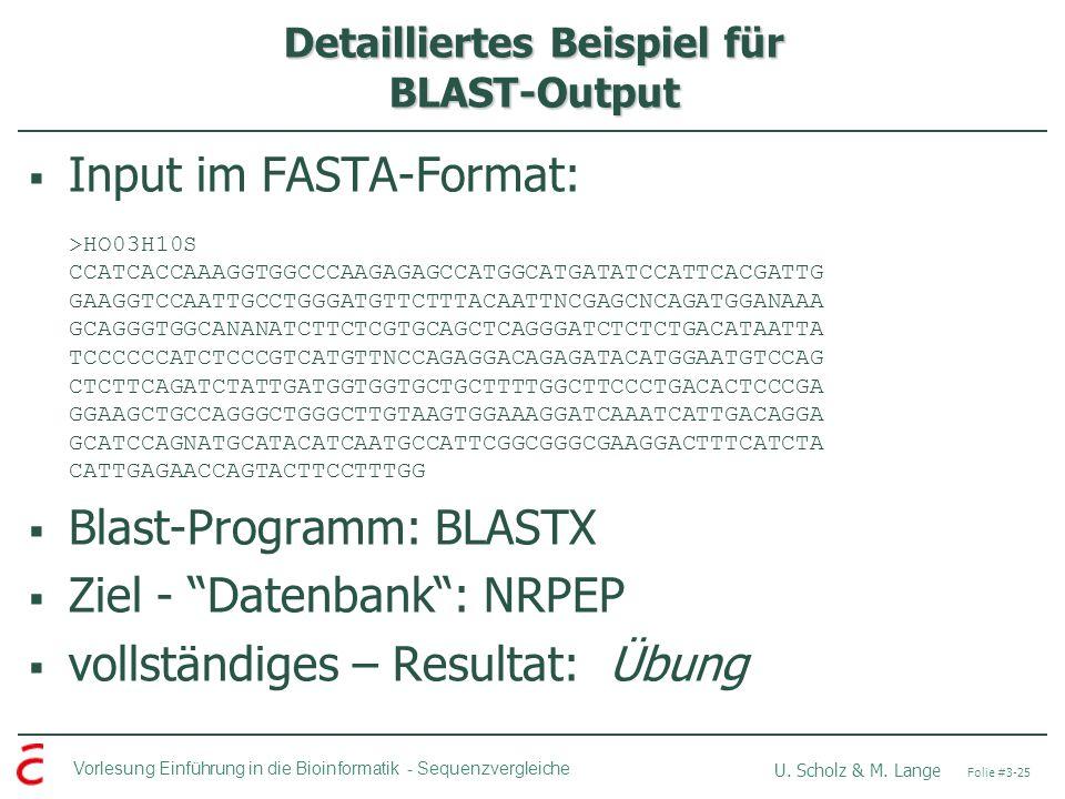 Detailliertes Beispiel für BLAST-Output