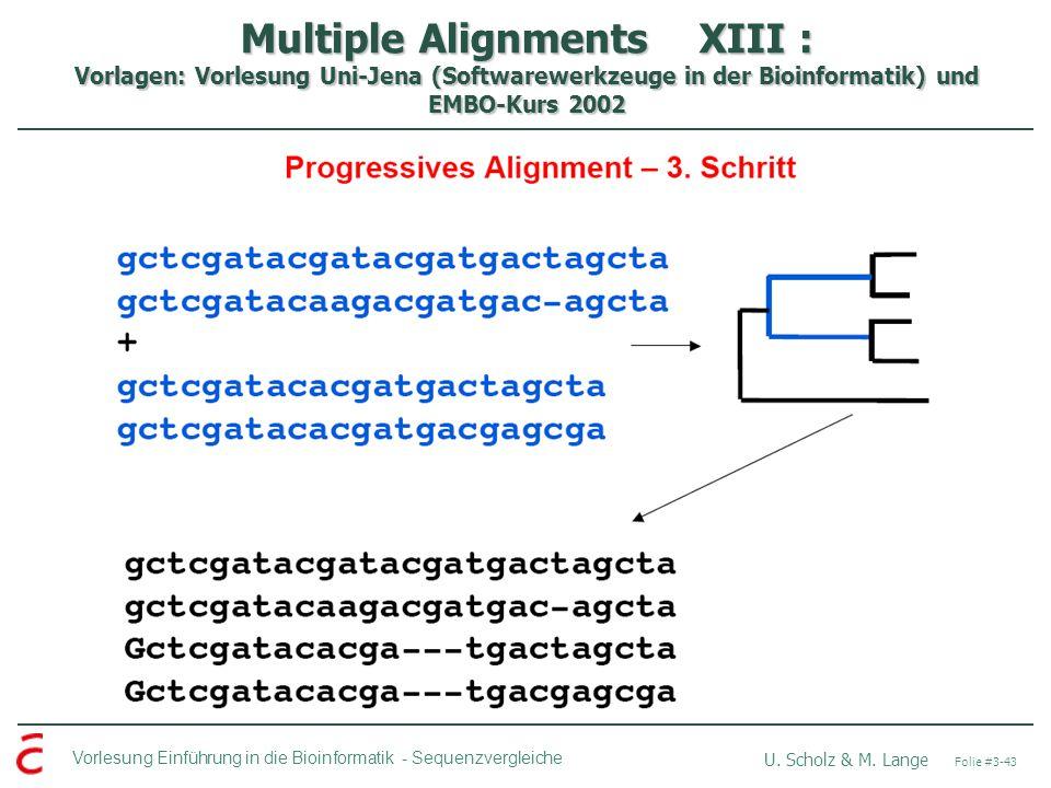 Multiple Alignments XIII : Vorlagen: Vorlesung Uni-Jena (Softwarewerkzeuge in der Bioinformatik) und EMBO-Kurs 2002