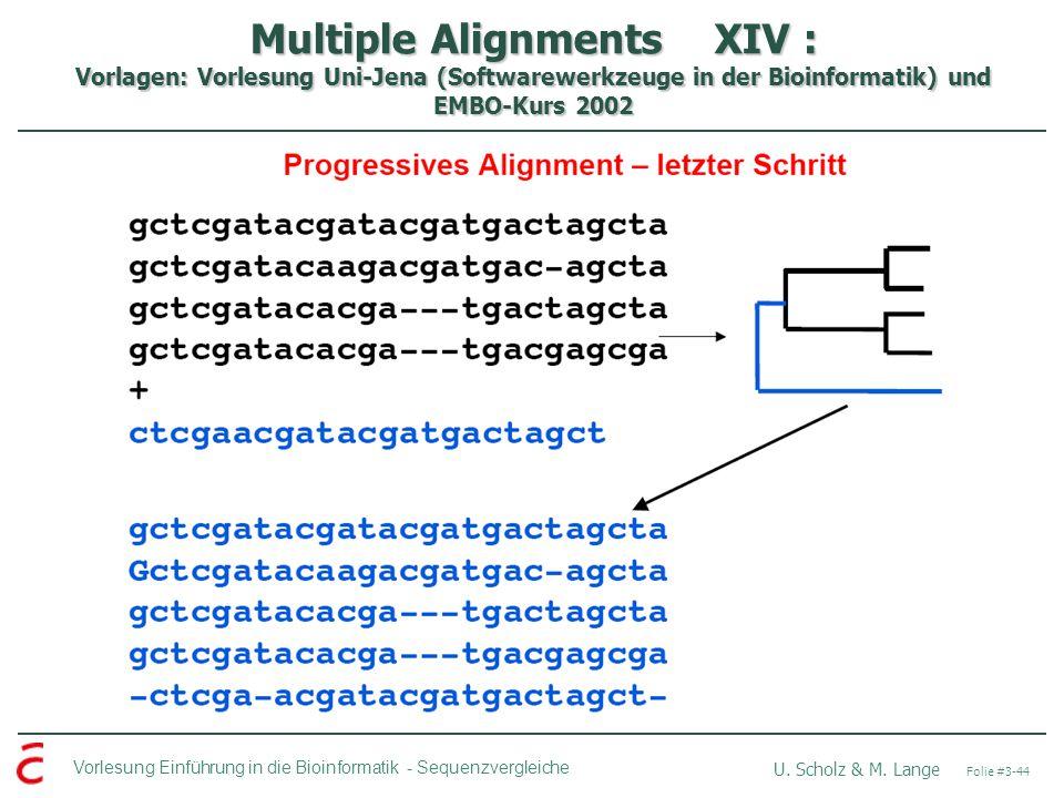 Multiple Alignments XIV : Vorlagen: Vorlesung Uni-Jena (Softwarewerkzeuge in der Bioinformatik) und EMBO-Kurs 2002