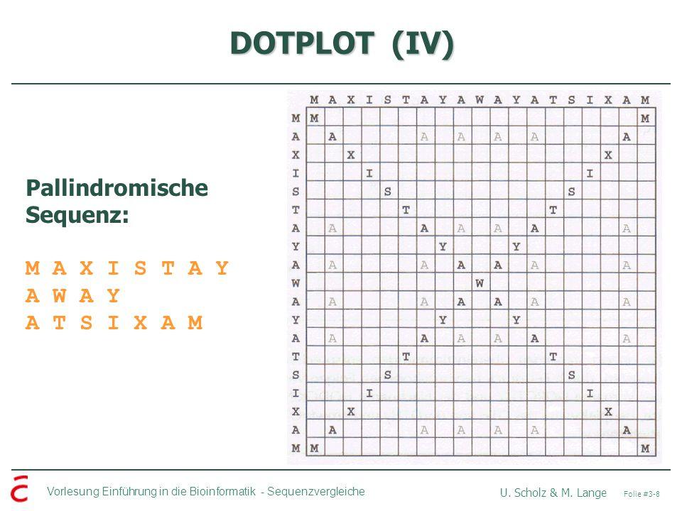 DOTPLOT (IV) Pallindromische Sequenz: M A X I S T A Y A W A Y