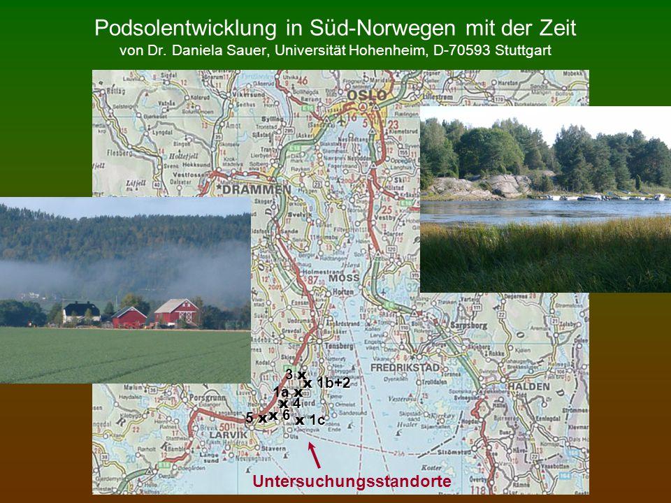 Podsolentwicklung in Süd-Norwegen mit der Zeit von Dr