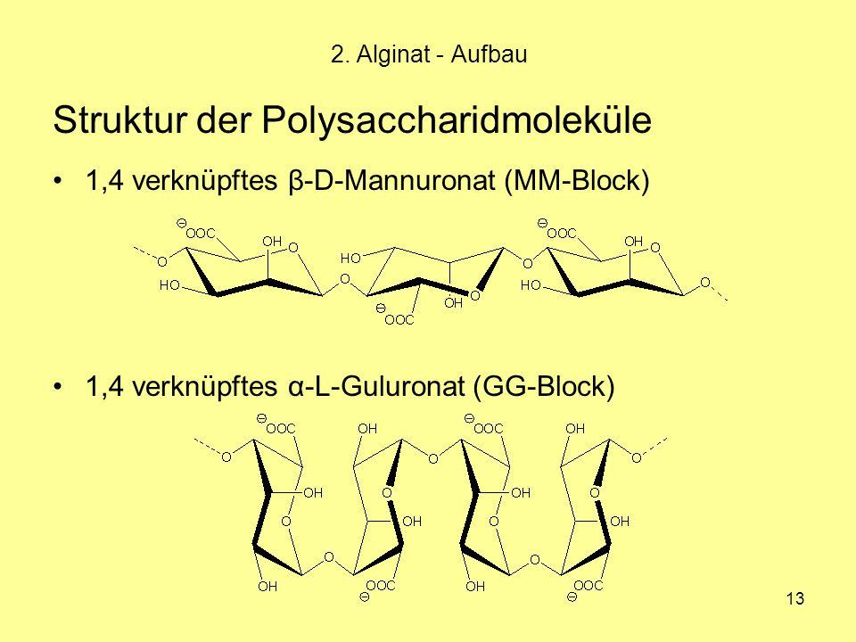 Struktur der Polysaccharidmoleküle