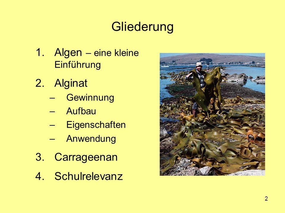 Gliederung Algen – eine kleine Einführung Alginat Carrageenan