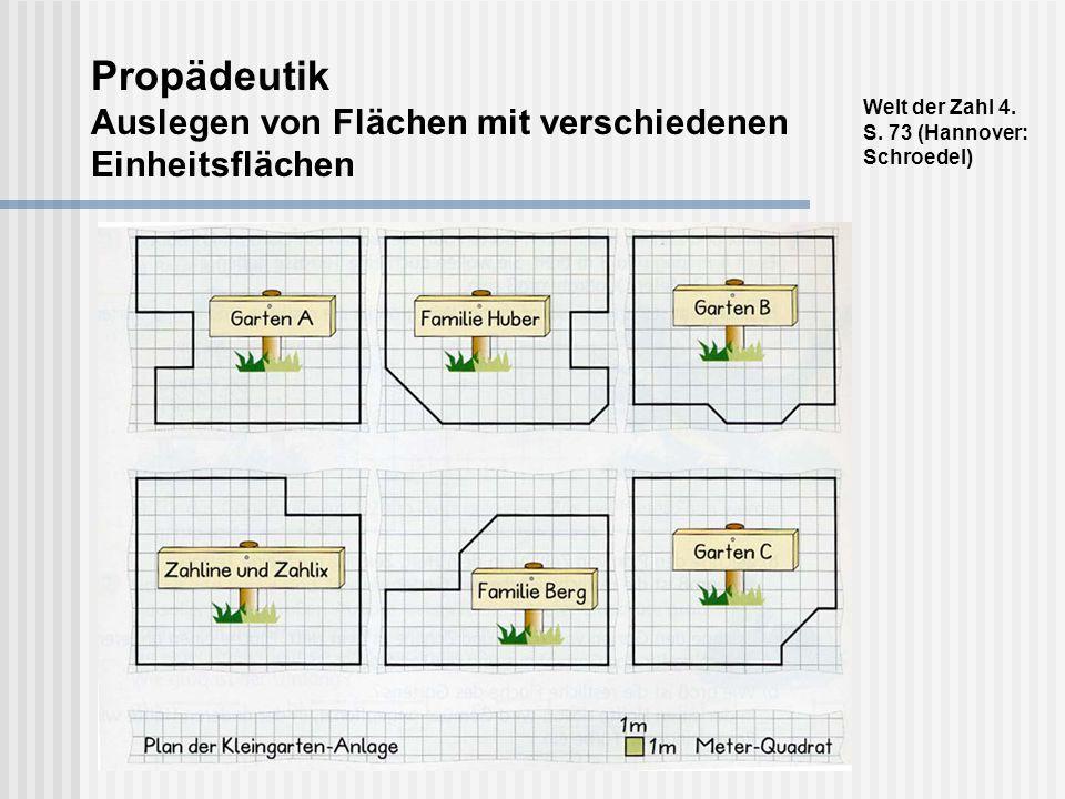 Propädeutik Auslegen von Flächen mit verschiedenen Einheitsflächen
