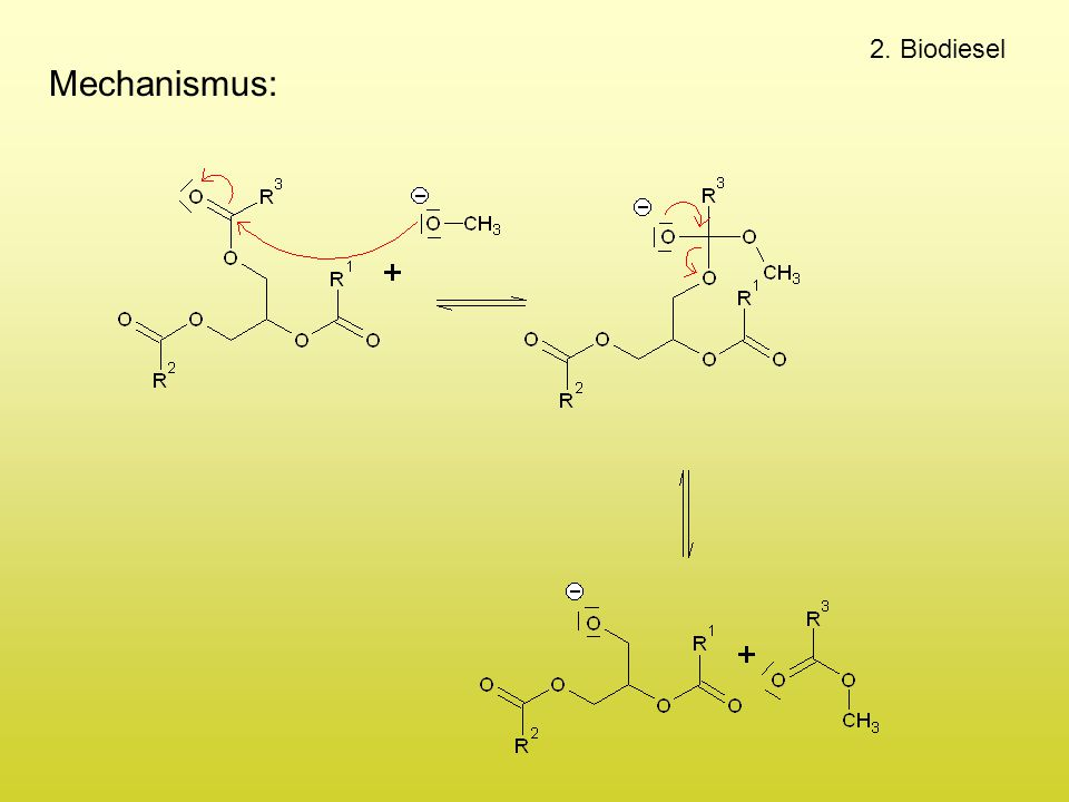 2. Biodiesel Mechanismus: