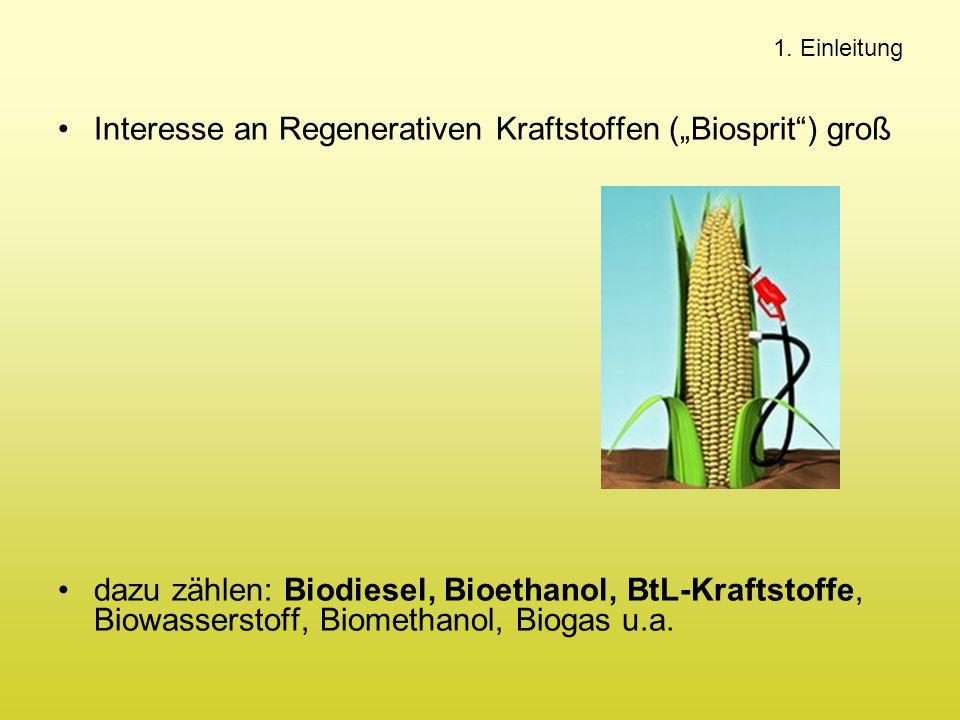 """Interesse an Regenerativen Kraftstoffen (""""Biosprit ) groß"""
