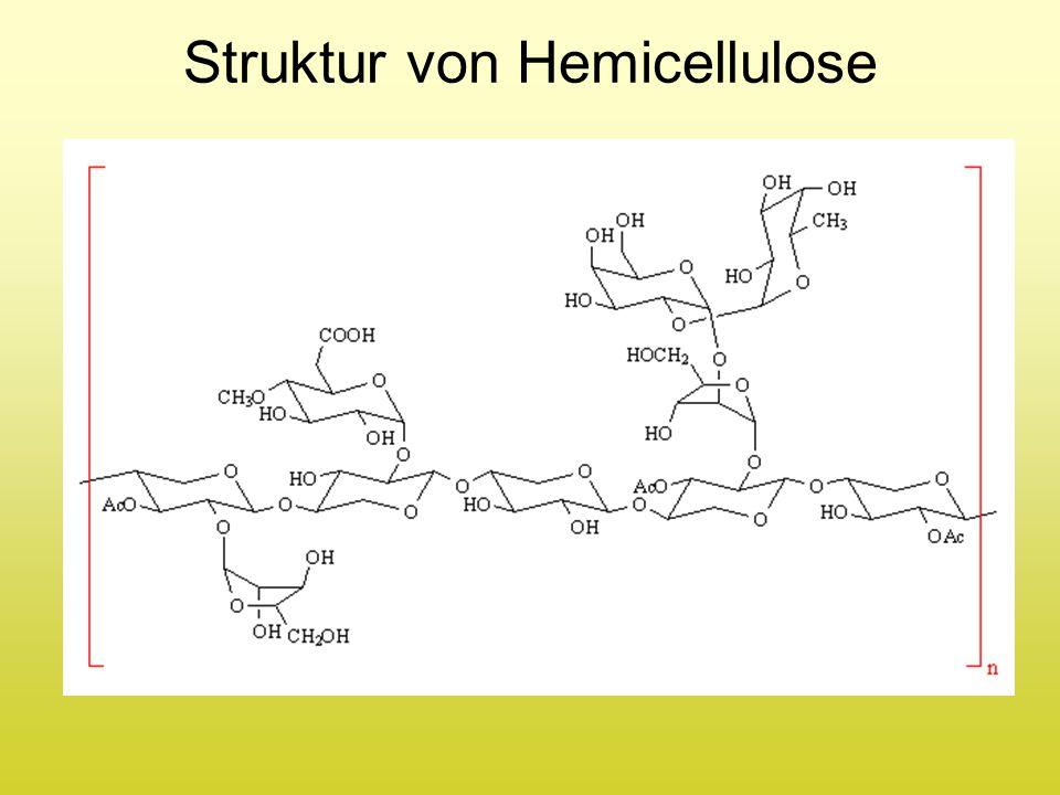 Struktur von Hemicellulose