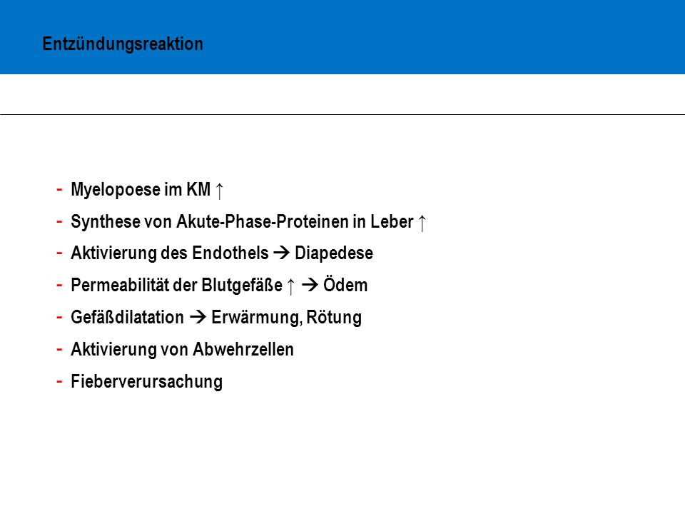Entzündungsreaktion Myelopoese im KM ↑ Synthese von Akute-Phase-Proteinen in Leber ↑ Aktivierung des Endothels  Diapedese.