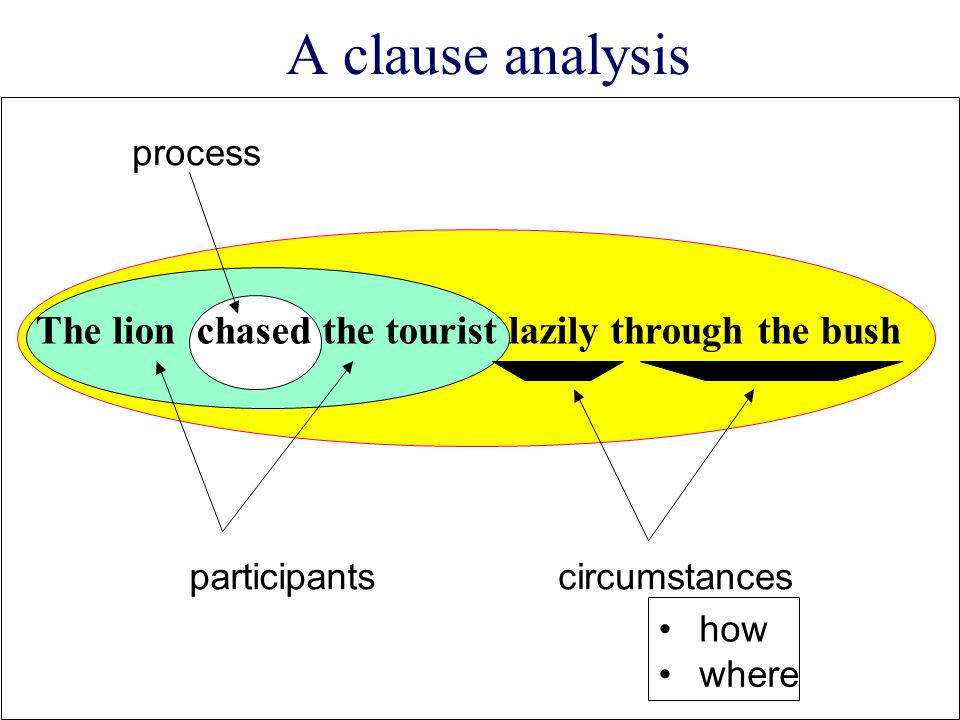 A clause analysis The lion chased the tourist lazily through the bush
