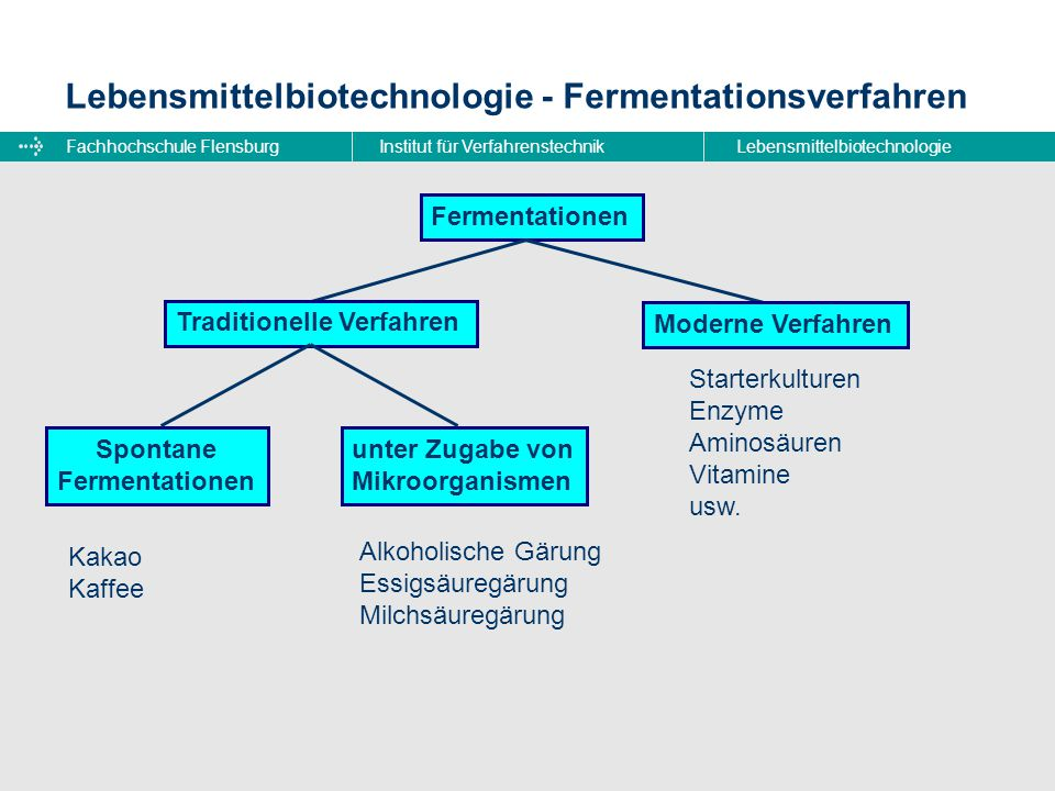Lebensmittelbiotechnologie - Fermentationsverfahren