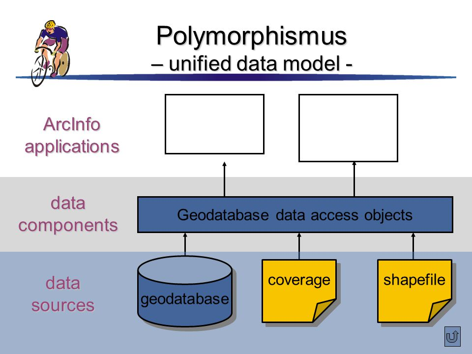 Polymorphismus – unified data model -