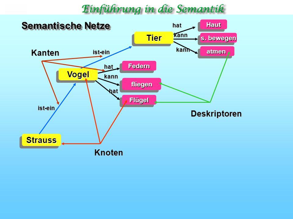 Semantische Netze Tier Kanten Vogel Deskriptoren Strauss Knoten Haut