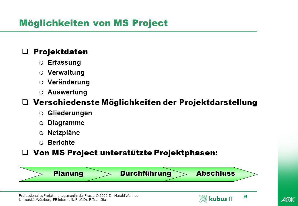 Möglichkeiten von MS Project