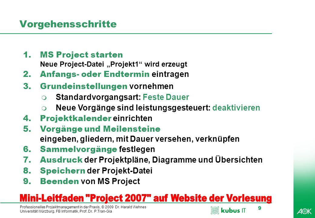 Mini-Leitfaden Project 2007 auf Website der Vorlesung