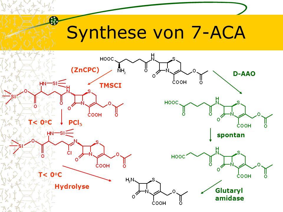 Synthese von 7-ACA (ZnCPC) D-AAO TMSCI T< 0oC PCl5 spontan