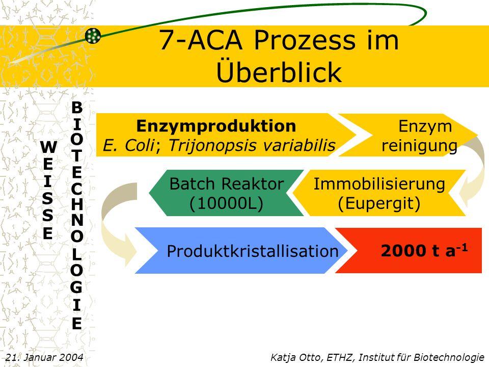 7-ACA Prozess im Überblick
