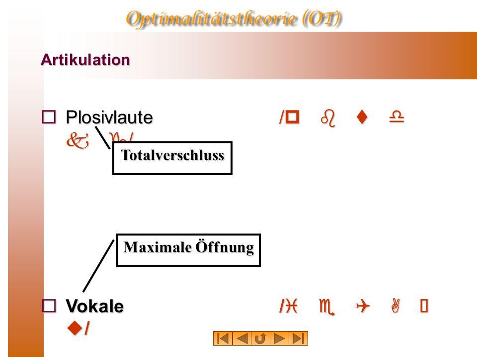 Plosivlaute /p b t d k g/ Vokale /i e Q A  u/ Artikulation