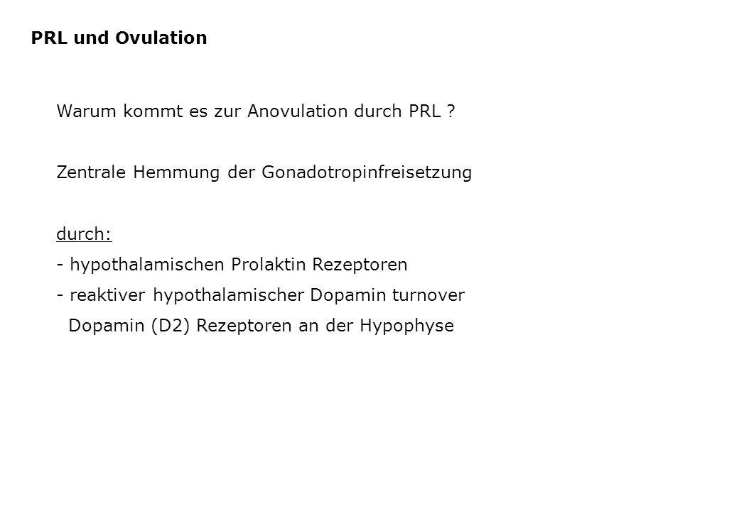 PRL und Ovulation Warum kommt es zur Anovulation durch PRL Zentrale Hemmung der Gonadotropinfreisetzung.