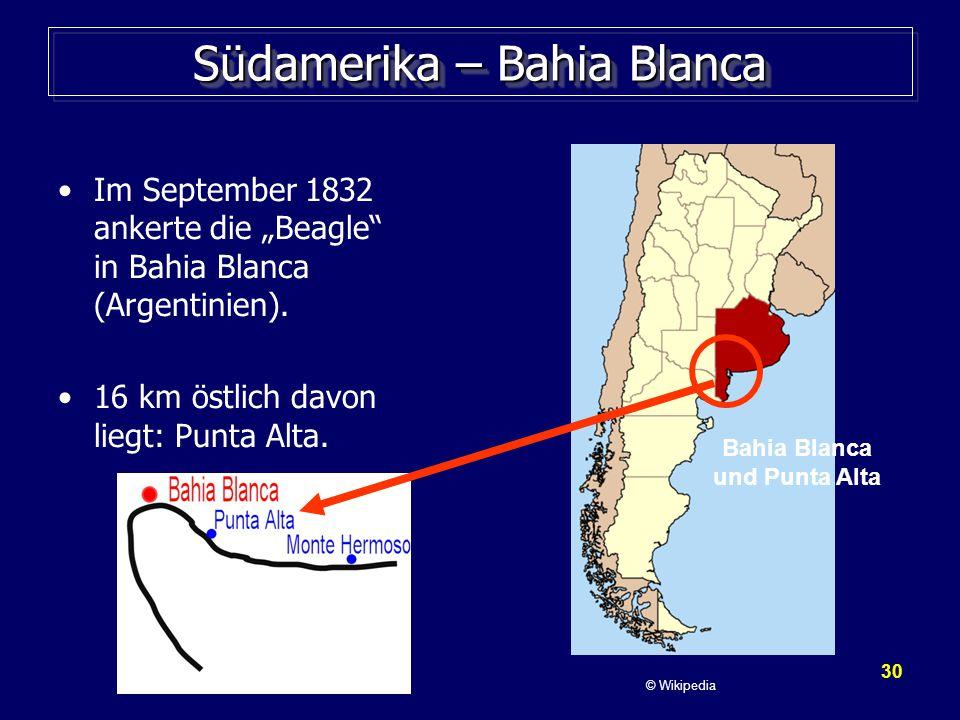 Südamerika – Bahia Blanca