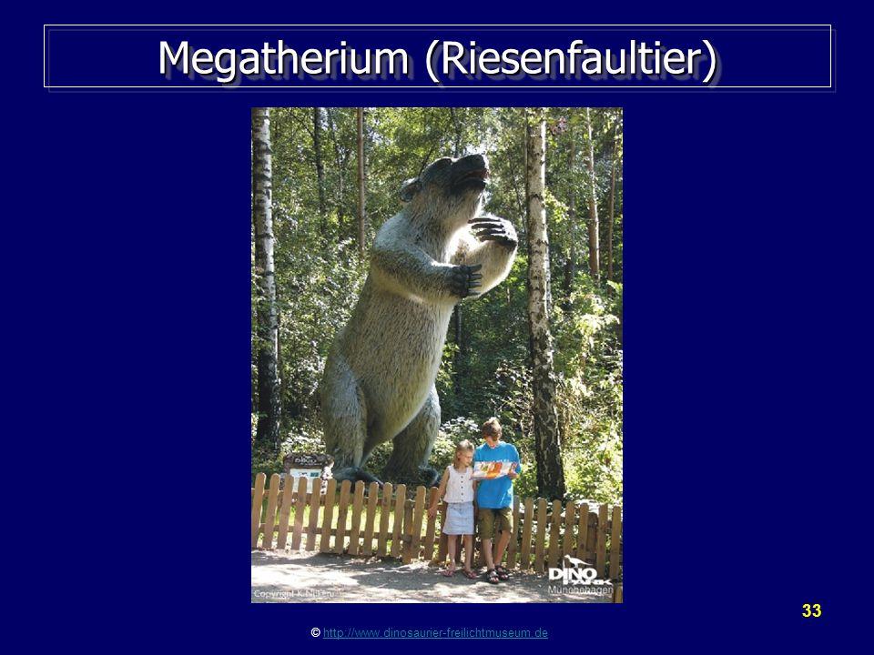 Megatherium (Riesenfaultier)