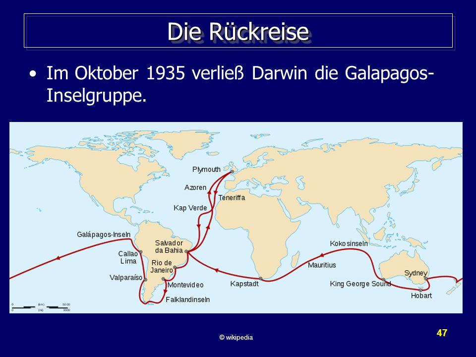 Die Rückreise Im Oktober 1935 verließ Darwin die Galapagos-Inselgruppe.