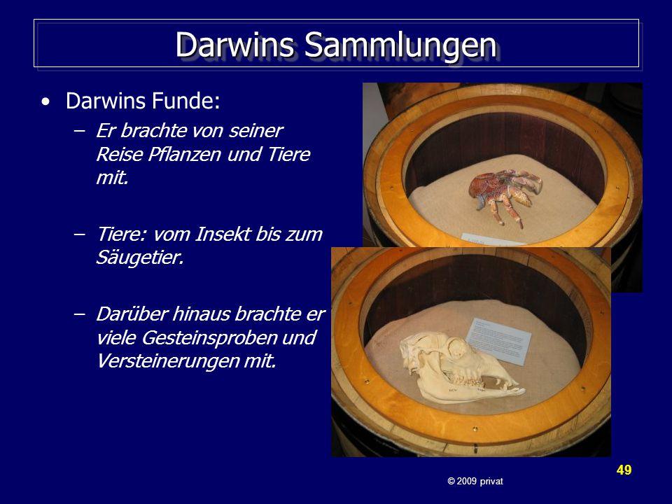 Darwins Sammlungen Darwins Funde: