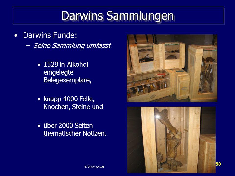 Darwins Sammlungen Darwins Funde: Seine Sammlung umfasst