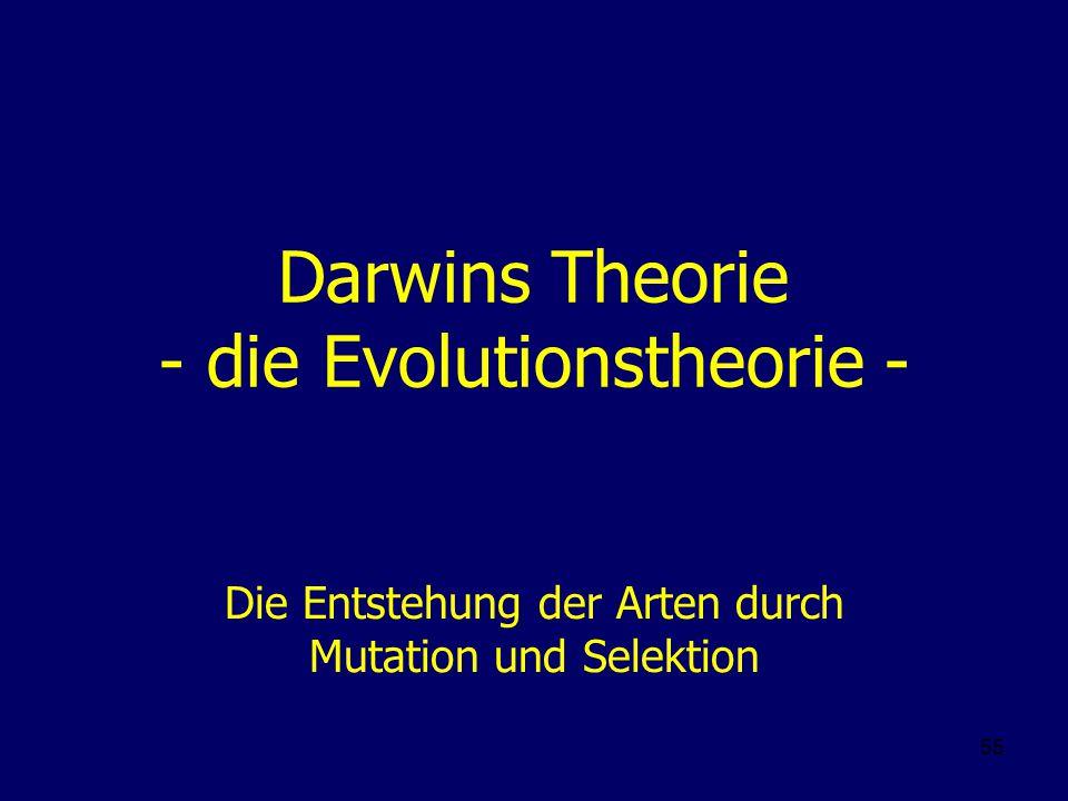 Darwins Theorie - die Evolutionstheorie -