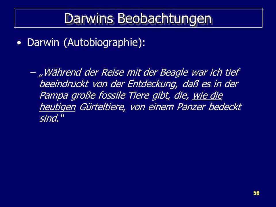 Darwins Beobachtungen